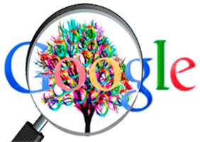 Tools SEO Google Cache Checker